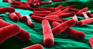 we wash e.coli